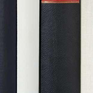 Mehrere schwarze und weiße Buchrücken stehen nebeneinander, auf denen die Manger und Reden steht