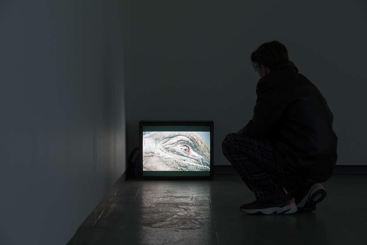 bauhaus und die fotografie zum neuen sehen in der gegenwartskunst nrw forum d sseldorf. Black Bedroom Furniture Sets. Home Design Ideas
