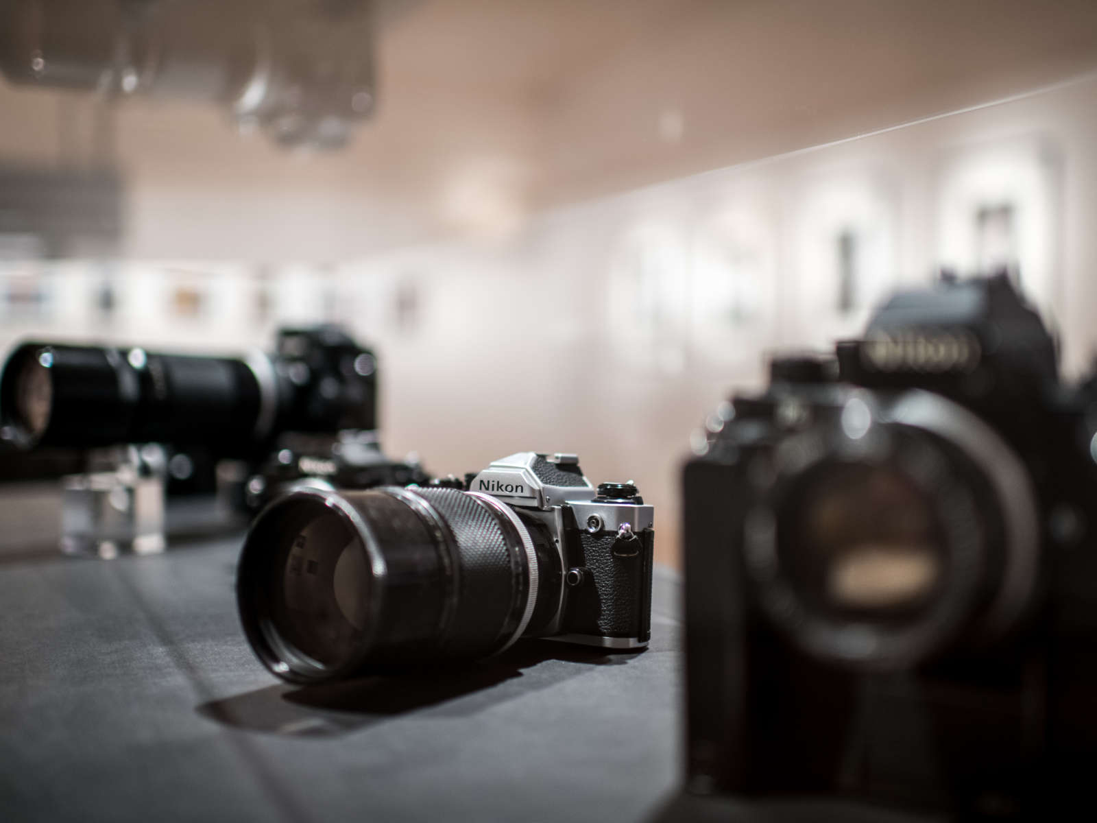 Vitriene mit historischen Fotoapparaten der Marke Nikon