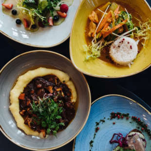 Vier bunte Teller mit verschiedenen, dekorativ angerichteten Gerichten